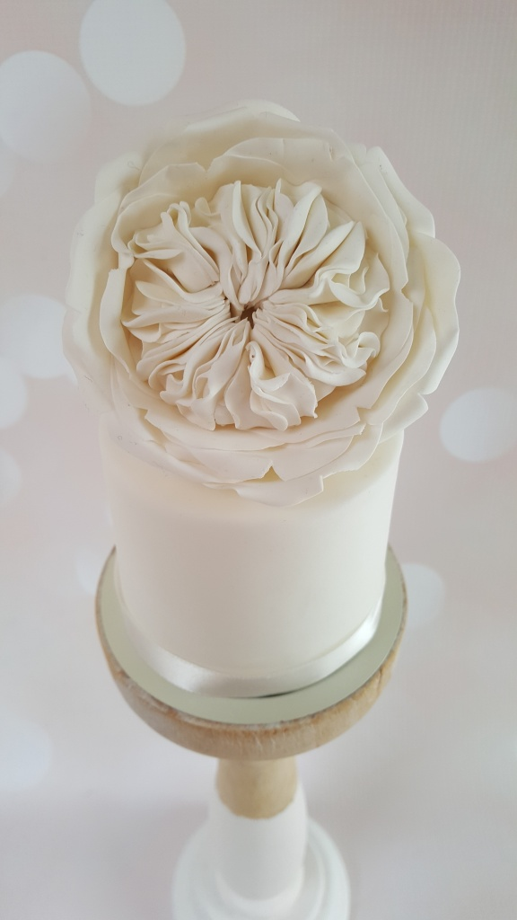 Mini cake David Austin Rose € 28,50 per stuk